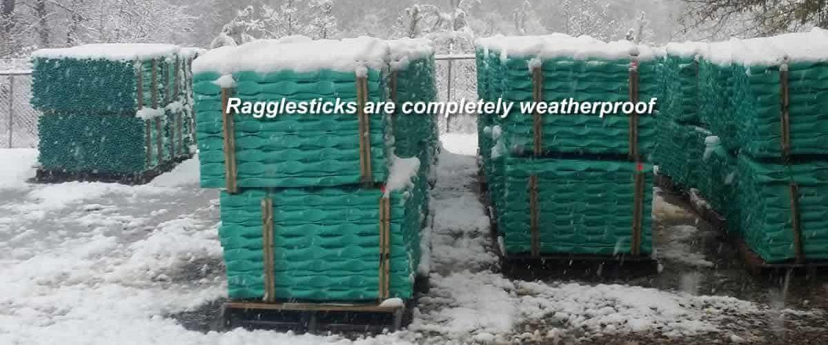 Ragglesticks winter scene